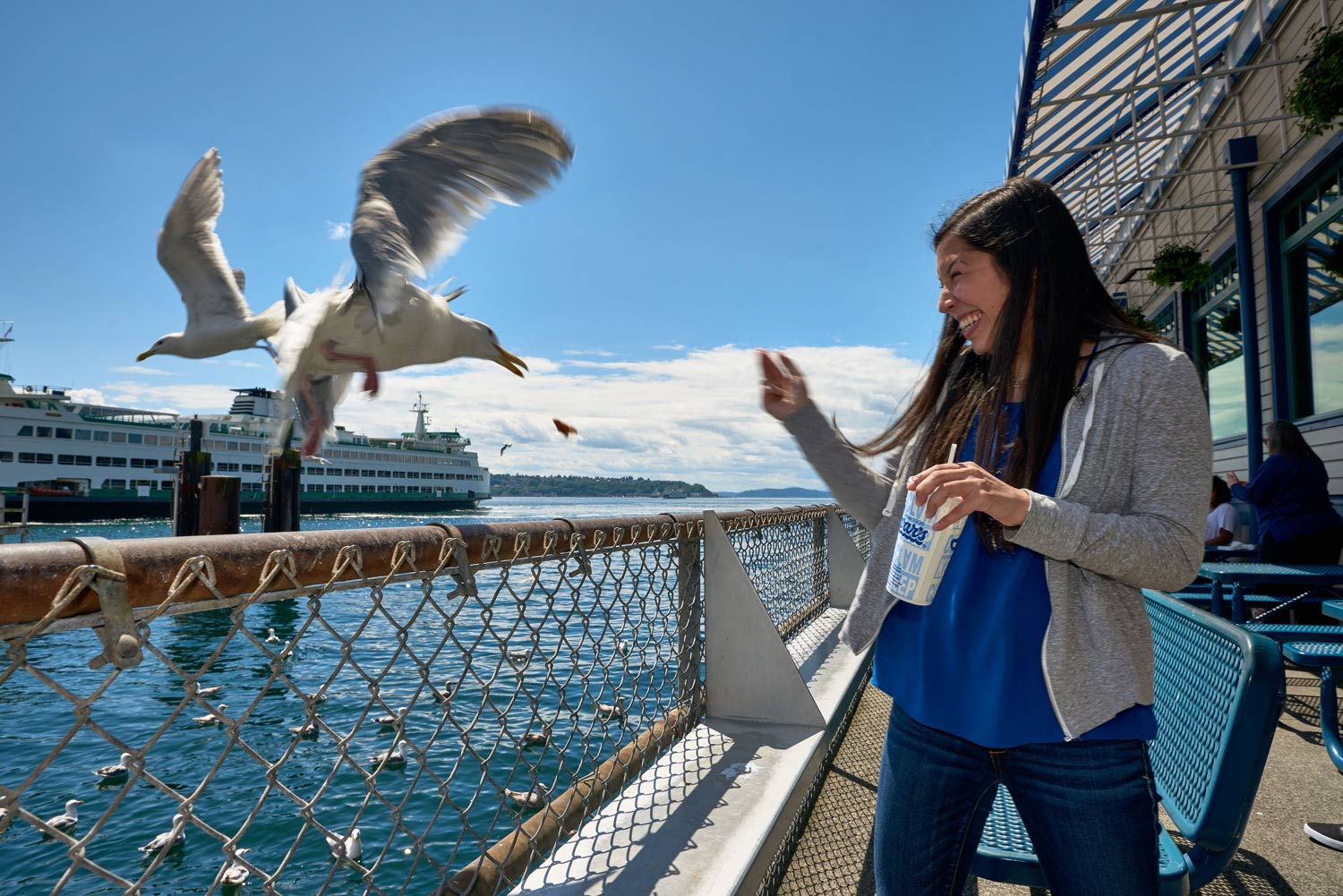 Seagull steals a chip at the waterfront