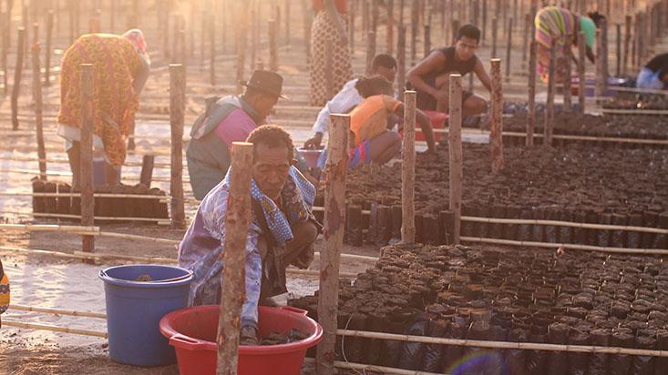 Farmers working in Madagascar